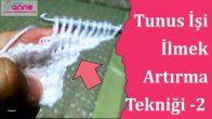 Tunus İşi İlmek Artırma Tekniği 2