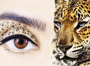Leopar Göz Makyajı Nasıl Yapılır? – Leopard Eyes Makeup