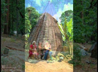 Vernacular Natural Homes of the World