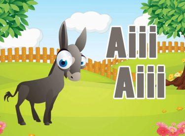 Ali Baba'nın Bir Çiftliği Var – AfacanTV