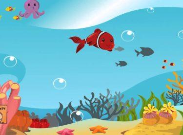 Kırmızı Balık Şarkısı