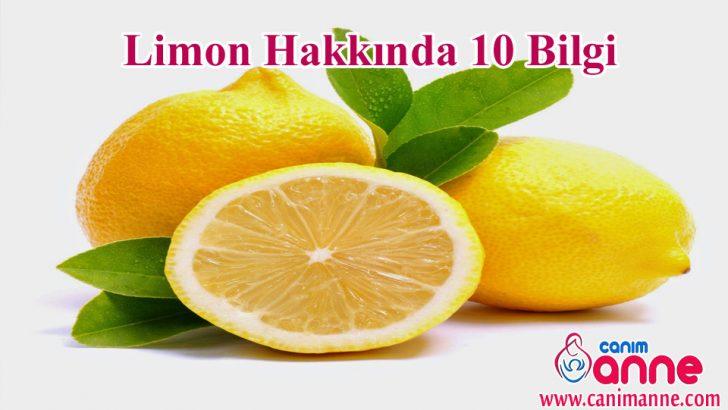Limon hakkında 10 bilgi