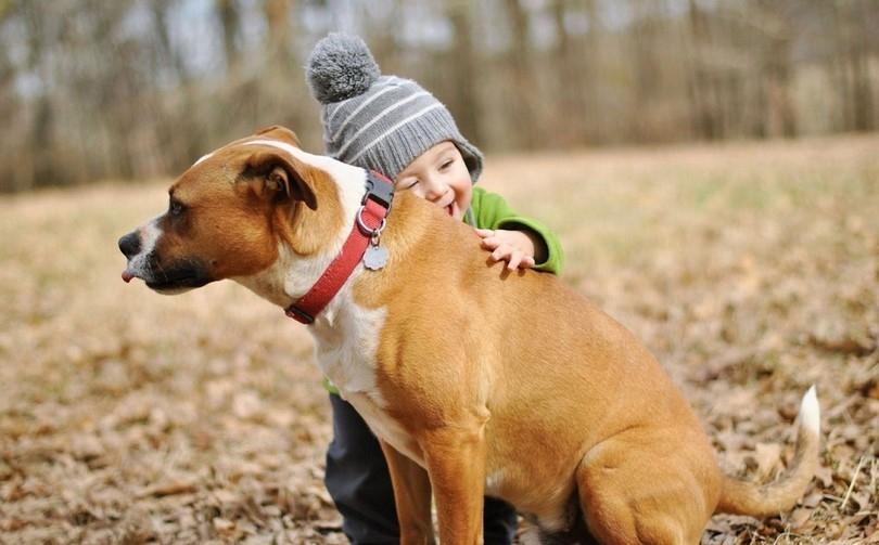 cocuklarda-hayvan-sevgisi