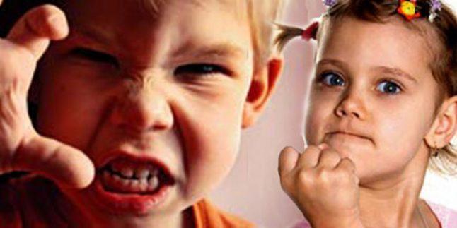 Çocuklarda Saldırganlık Davranışlarının Önlenmesi
