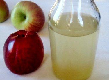 Elma Sirkenizi Kendiniz Yapın!