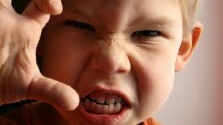Çocuklar Neden Sinirli Olur?