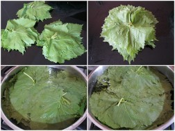 taze-asma-yapraklari-uzun-sure-nasil-saklanir-4