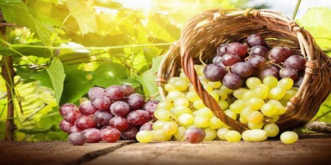 Diyetteyken Gıdalar Ne Kadar Tüketilmeli?