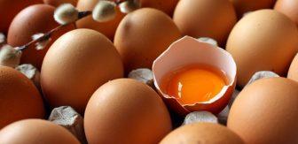 yumurtanin-taze-oldugu-nasil-anlasilir-3