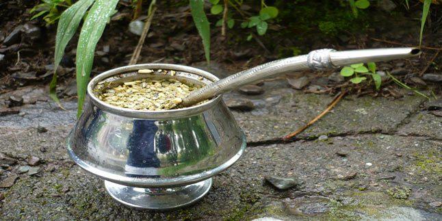 Zayıflamak için Mate Çayı