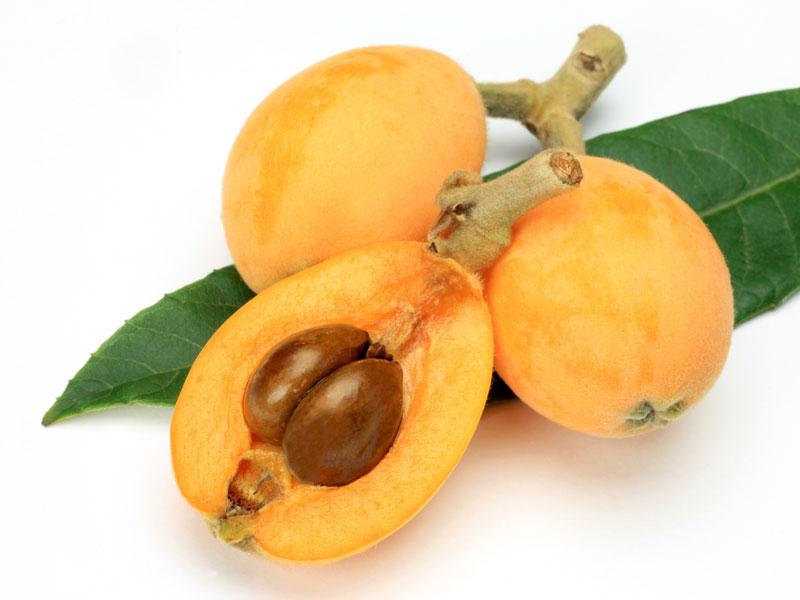 yeni dünya meyvesi nasıl ekilir